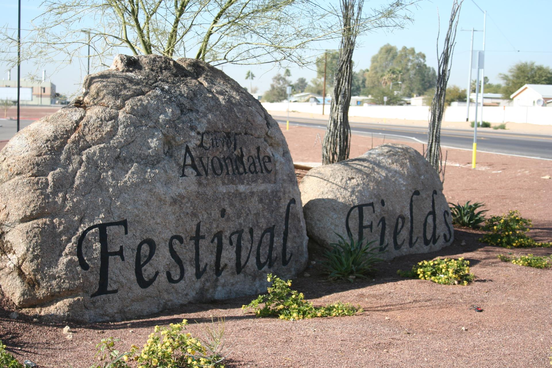 Avondale to hold public design input meeting for Festival Fields skate park and pump track