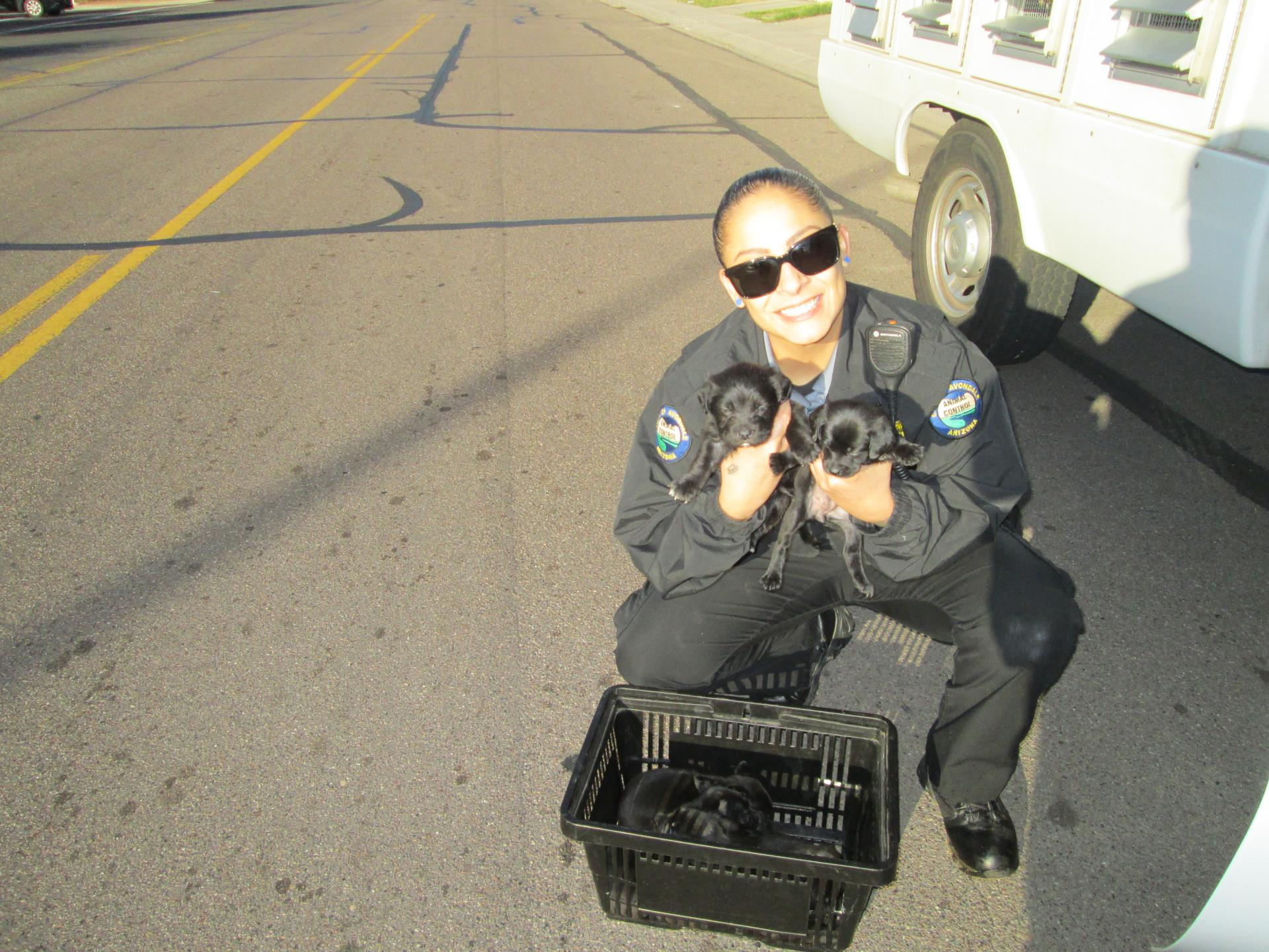 Animal Control Officer with found puppies